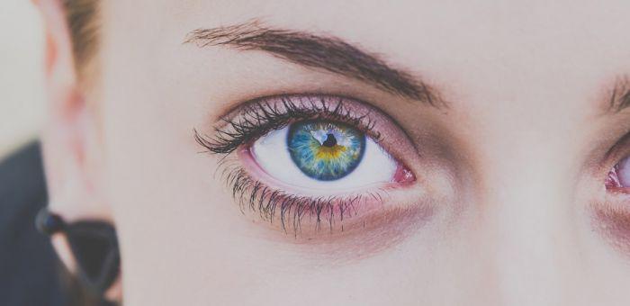 Iris dunkler die ring um Schwarzer limbus